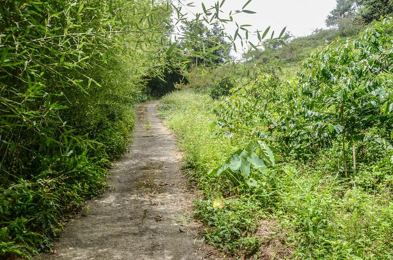 西砂埔鹿山登山步道