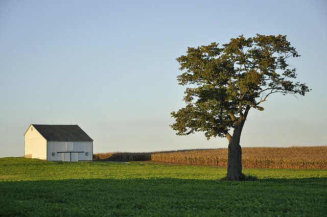 Lonely Barn, Sept 2011