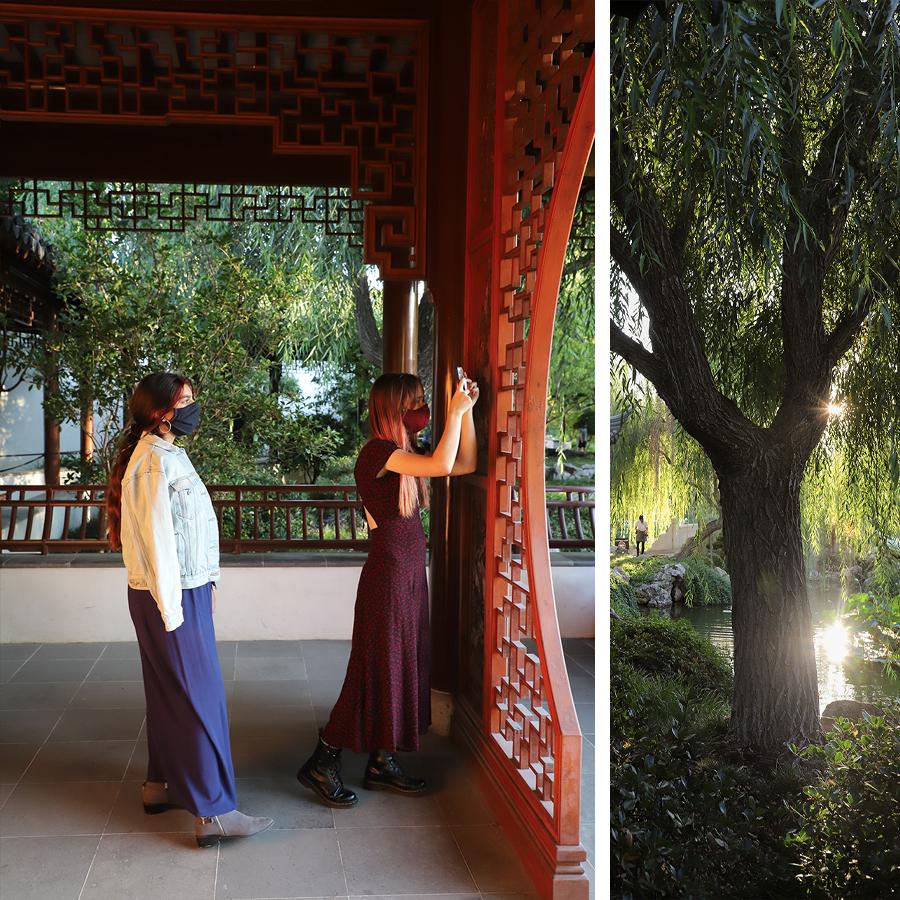 Chinese-Garden-at-Huntington-Botanical-Gardens-4