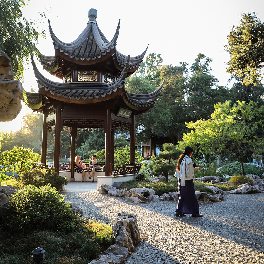 Chinese-Garden-at-Huntington-Botanical-Gardens-5