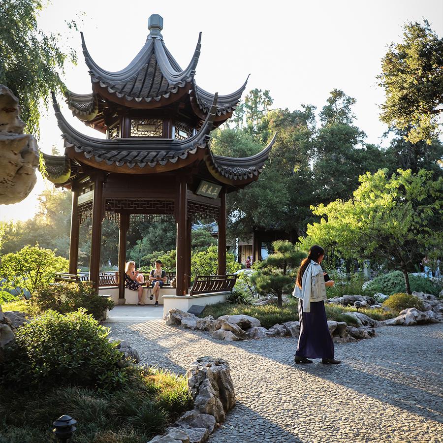 Chinese-Garden-at-Huntington-Botanical-Gardens-5