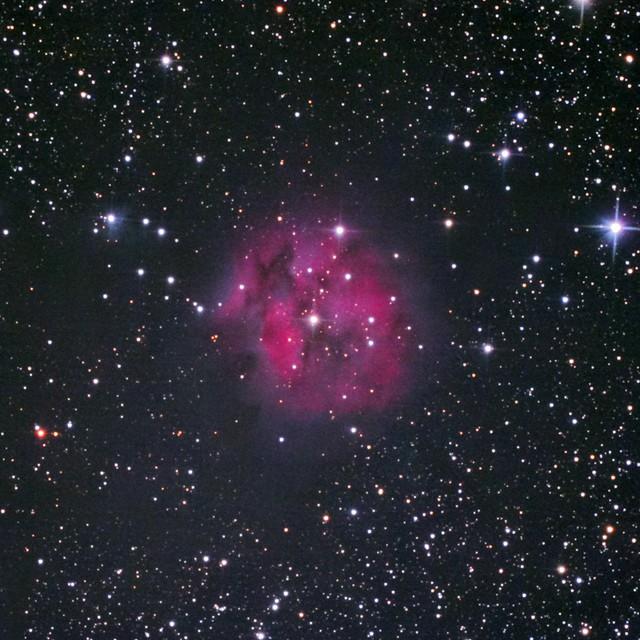 VCSE - az IC 5146 kinagyított képe - Fotó: Fridrich János