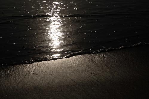 us outdoors beach wa westport grayland washington unitedstates