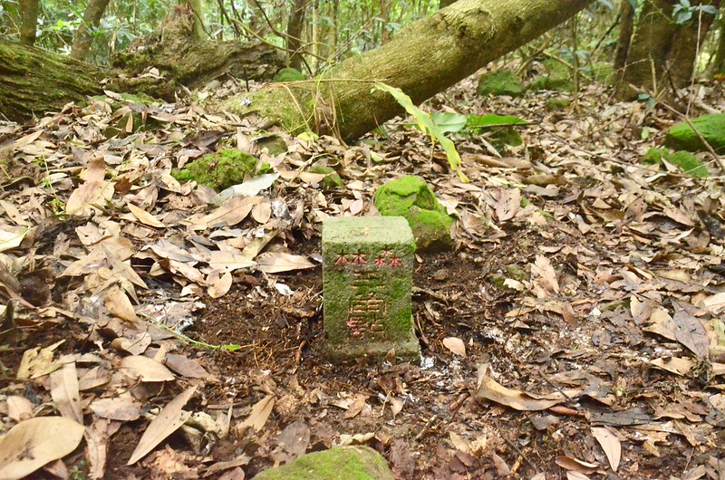 西橫龍山補近(07)的山字森林三角點(Elev. 1090 m) (1)