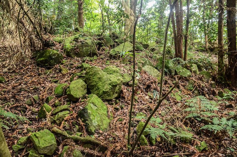 西橫龍山寬稜石堆