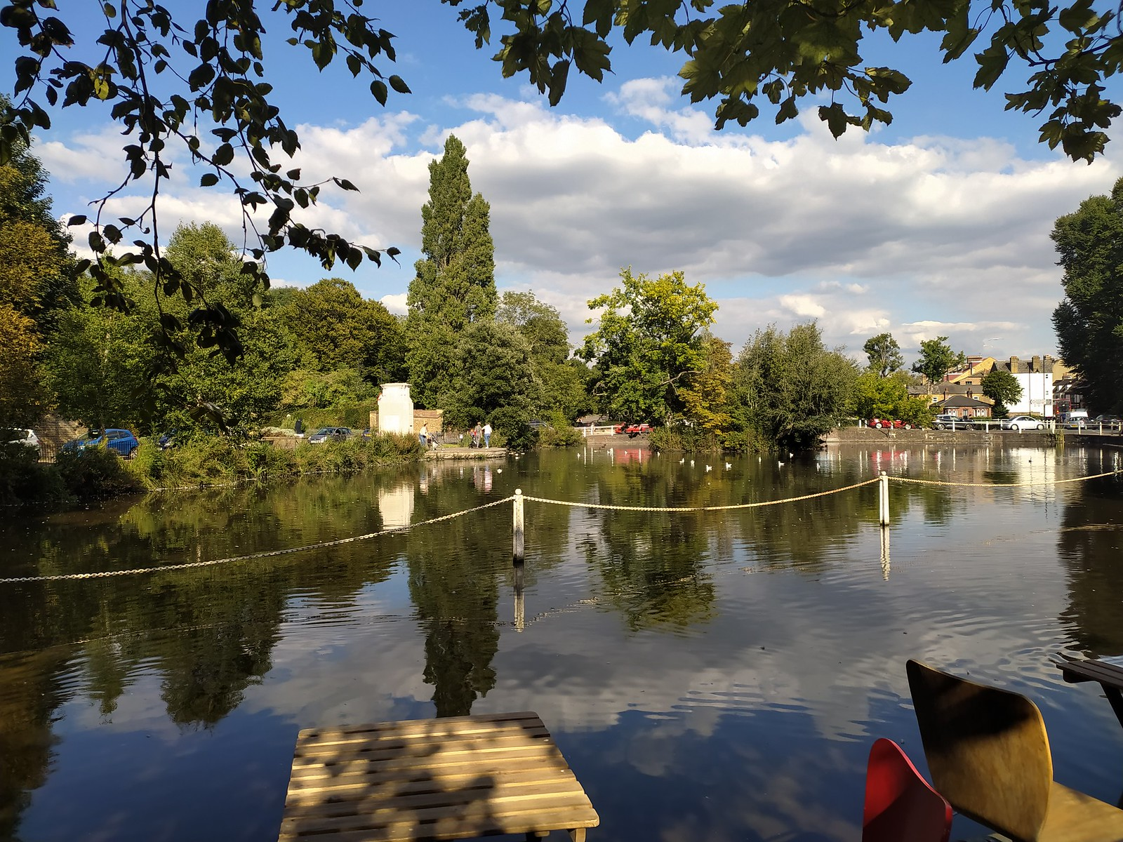 View from the cafe overlooking Carshalton Ponds