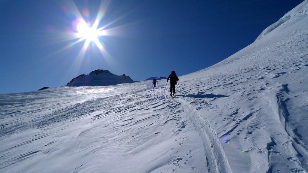 Bishorn Walliser Alpen / Alpes valaisannes Switzerland photo 25