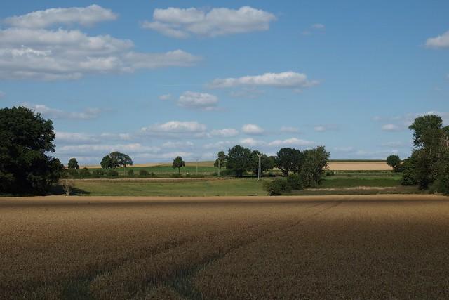 Landschaft im Rheinland
