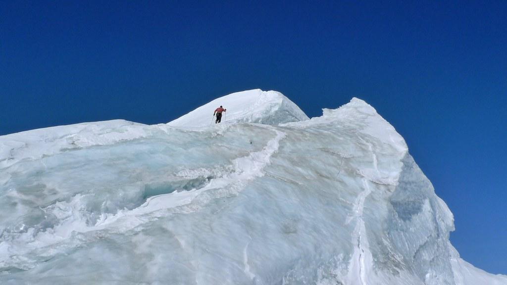 Bishorn Walliser Alpen / Alpes valaisannes Switzerland photo 34