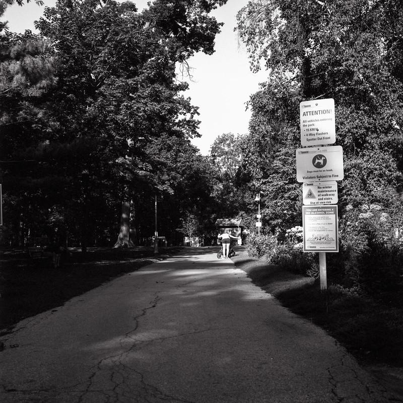 Entrance to the Gardens_