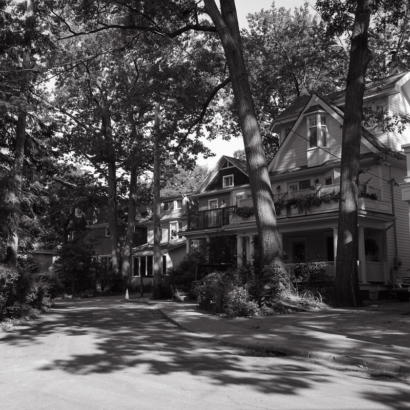 Hazel Ave In the Shade