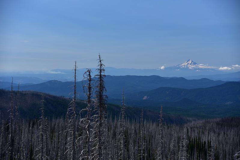 Mt. Adams Wilderness