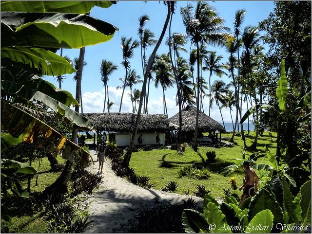 El Paradís (Samaná - Rep. Dominicana)                                EXPLORE (04-09-2020 Rang 37)