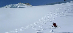 Blanc de Moming - Dôme Circuit