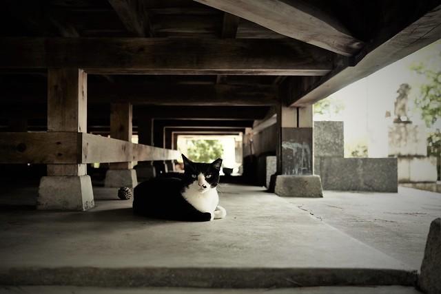 cool underfloor