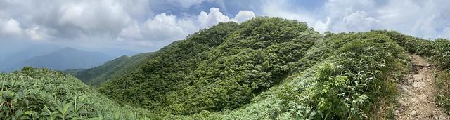 荒島山_027