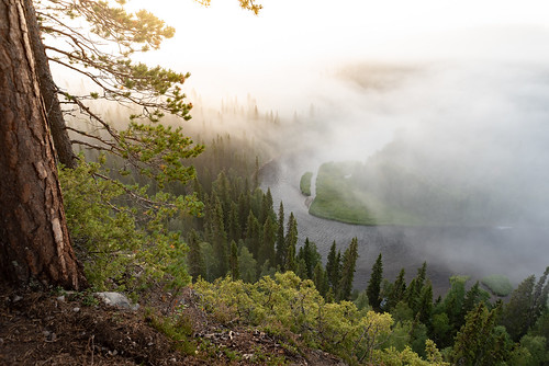suomi finland oulanka nationalpark landscape nature trees forest cliff mist fog sunrise morning summer river clouds pähkänäkallio lapland nikon d750 sigma 20mm art wideangle benro maisema auringonnousu sumu metsä joki kesä 2020 amazing europe scandinavia