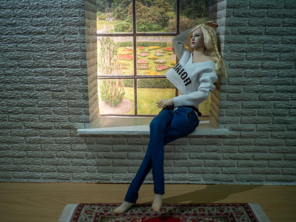 Phicen Window Posing 50302075483_351afb40c3_b