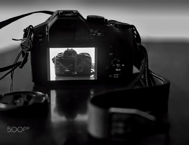 Fotografia em Palavras: Minha máquina fotográfica