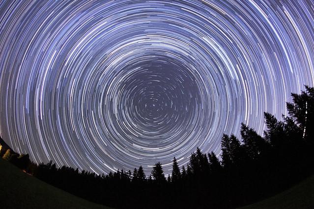 VCSE - A sarkcsillag (Stella Polaris) és környéke nyári alpesi fenyvessel - Fotó: Román Dávid