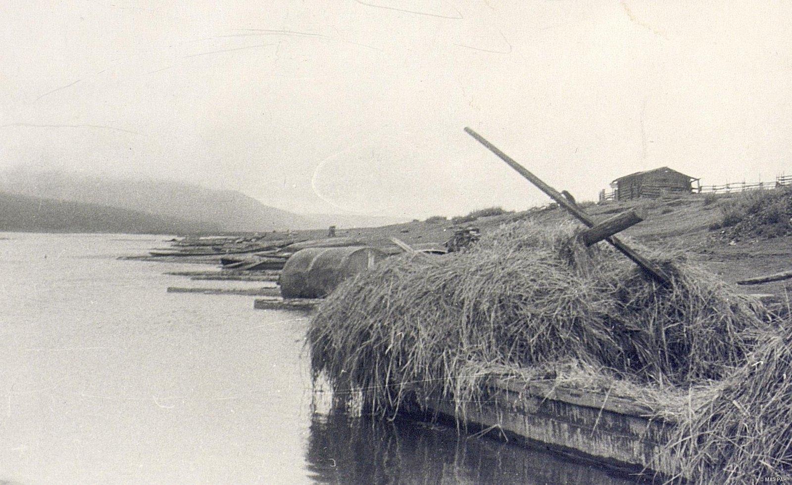 Перевозка сена на лодках по реке Ангаре