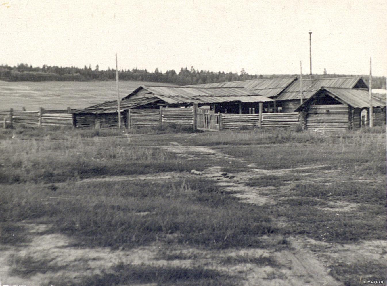 Колхозные хозяйственные постройки