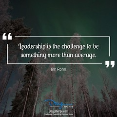 img495_leadership