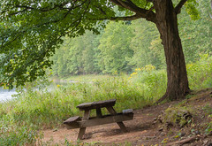 Picnic Bench on the river bank (D700)