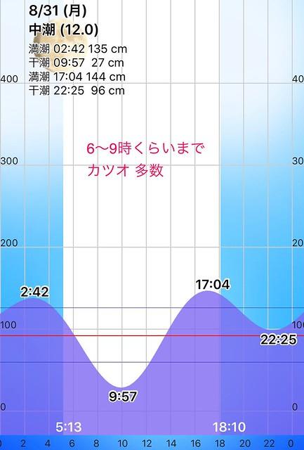 タイドグラフ。