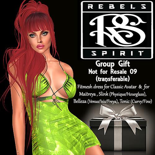 RebelsSpirit Group Gift not for resale 09 (transferable)
