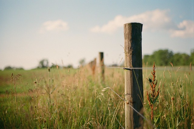 fences make good neighbors?