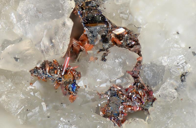 火閃銀鉱 & 濃紅銀鉱  / Pyrostilpnite & Pyrargyrite