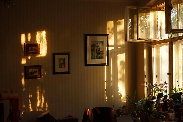 Ein Zimmer in einer Altbauwohnung, durchs Fenster fällt Sonnenlicht, das goldene Felder auf die Tapete wirft