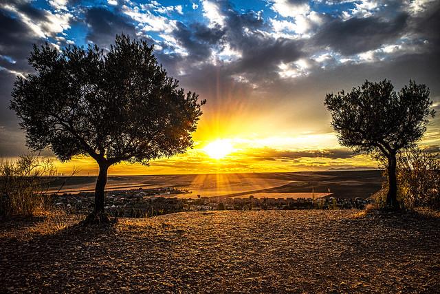 Camarma de Esteruelas under sunset