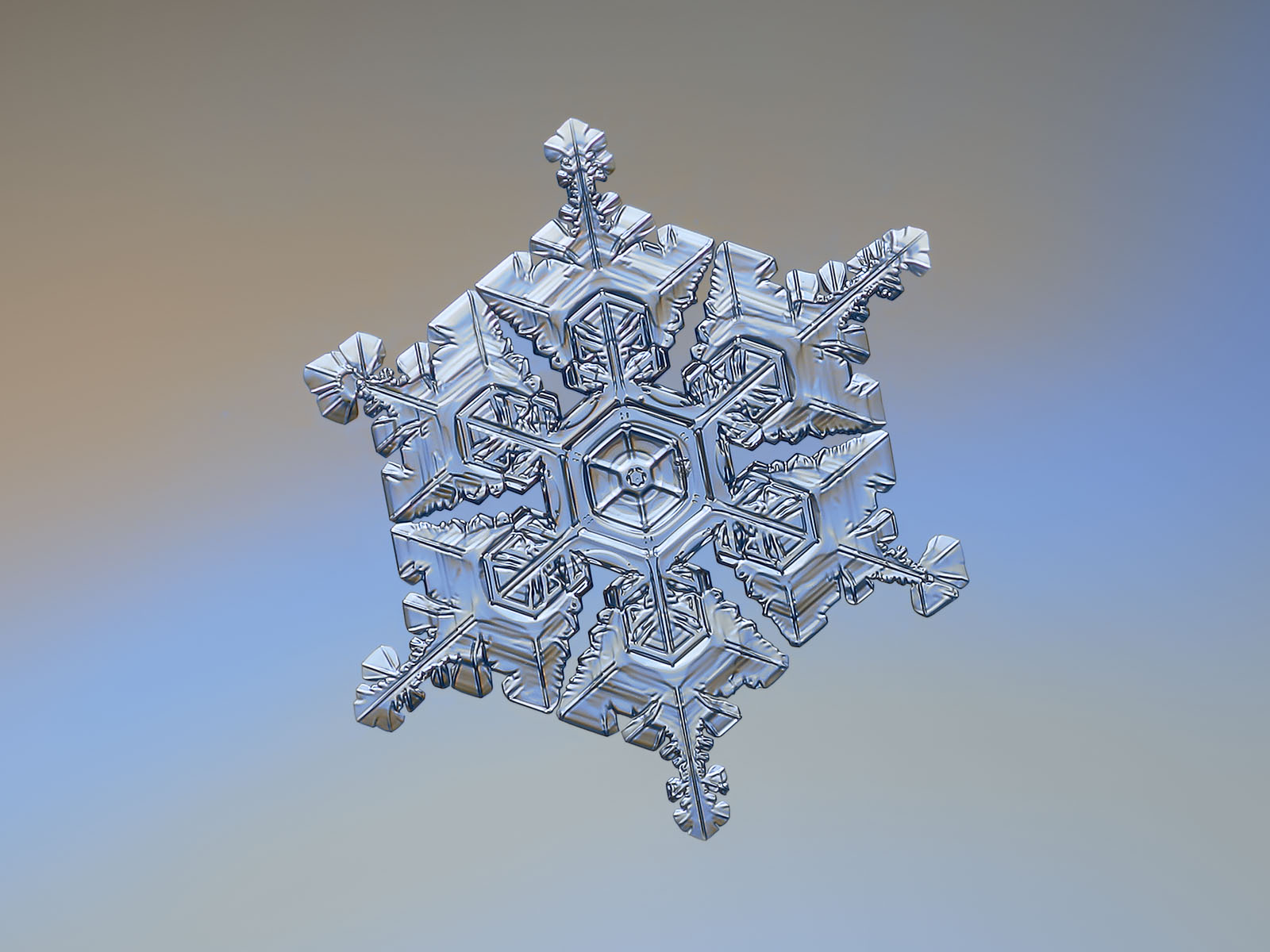 Picture of real snowflake: snow crystal of star plate type with complex 3d structure and glossy surface