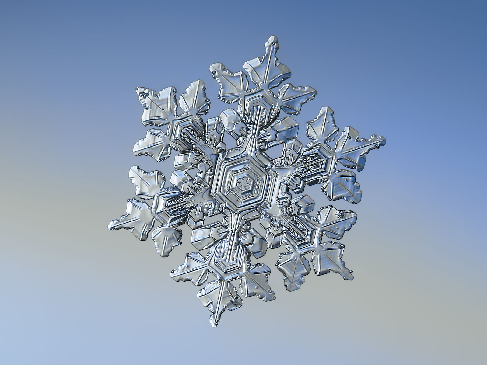 Snowflake picture: real snow crystal with short arms and glossy 3d surface, sparkling on smooth blue background