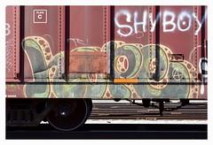 Hope4 Shy Boy