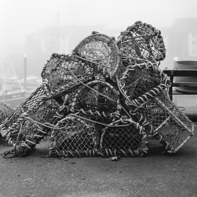 Lobster Pots in the Mist