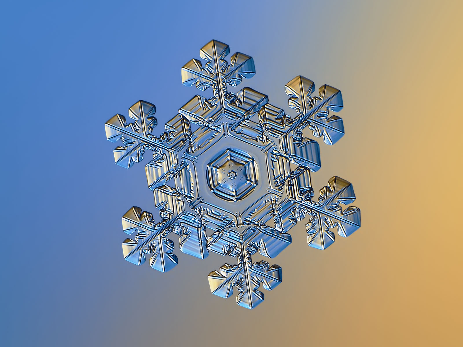 Real snowflake macro photo: beautiful star plate with hexagonal symmetry and glossy, 3d surface, sparkling on gradient background