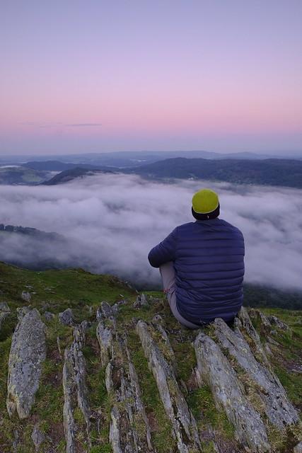 Reflecting in Solitude.