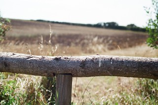 Dorset fence | by uncoolbob