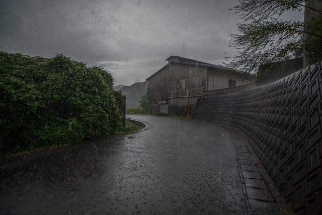 A devastating typhoon will come tomorrow.