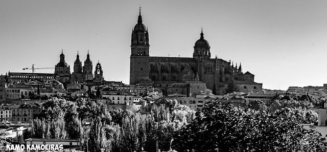 catedrales parador, B&N