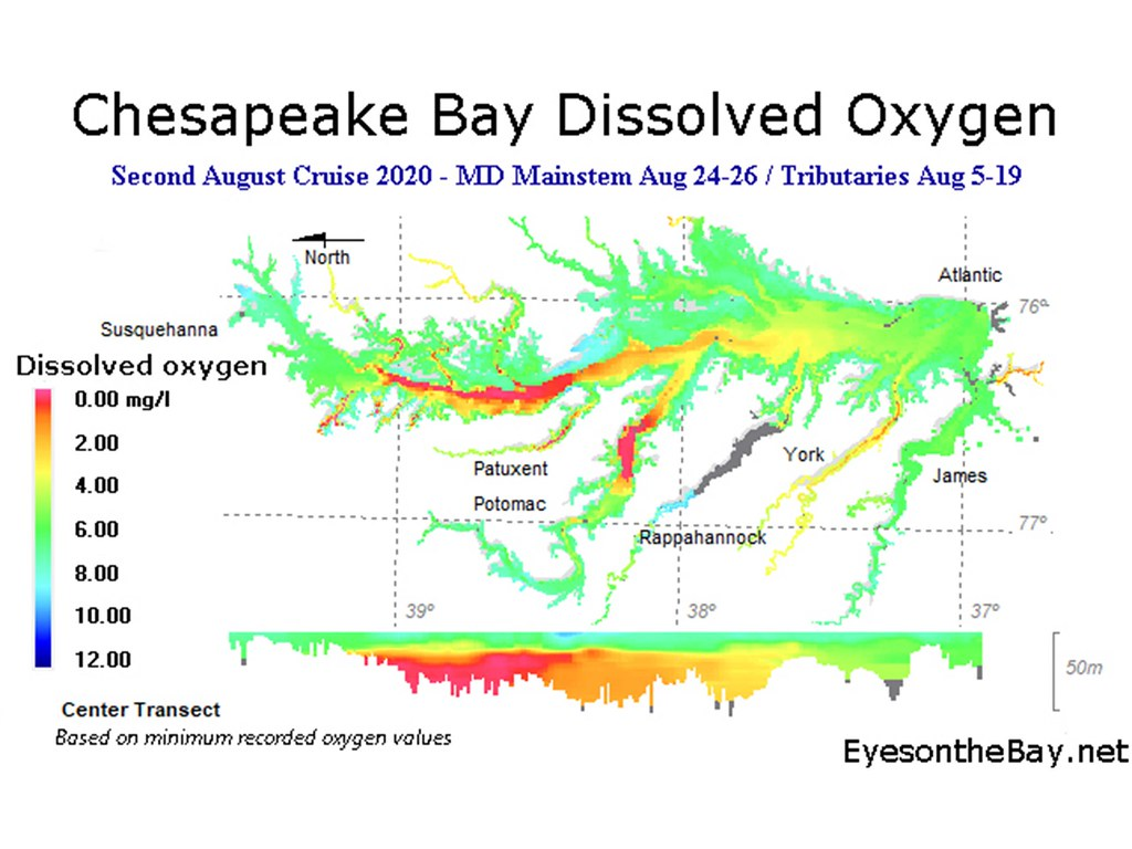 Map of Chesapeake Bay Dissolved Oxygen results for late August 2020