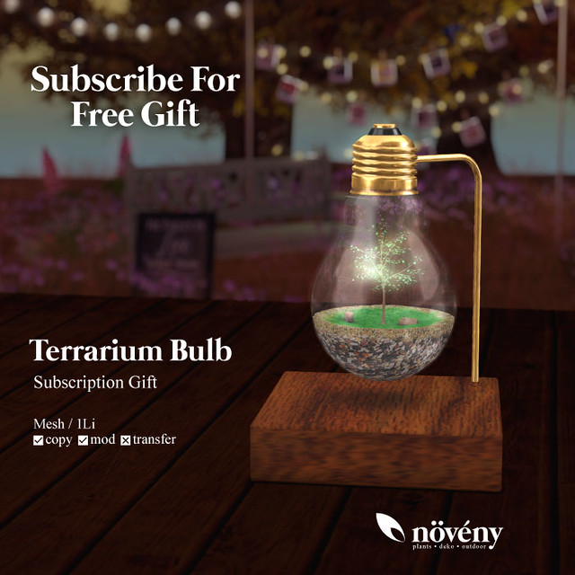 Noveny - Terrarium Bulb