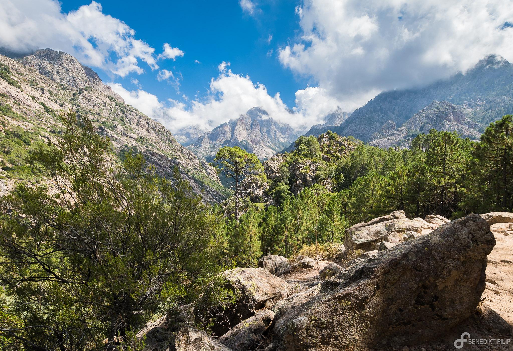 Mountain range of Bonifatu Forest