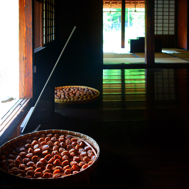 構成=Composition-208/Fruits on a round plate surrounded by square lights