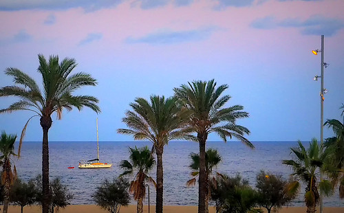 sea mar water waterfront beach shore seashore coast platja playa sky cielo skyscape cloud clouds landscape tree palmtree nature naturaleza light dark boat sailboat color colour colores colours colors shadow shadows evening badalona outside outdoor outdoors