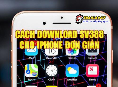 tai-da-ga-sv388-cho-dien-thoai-iphone