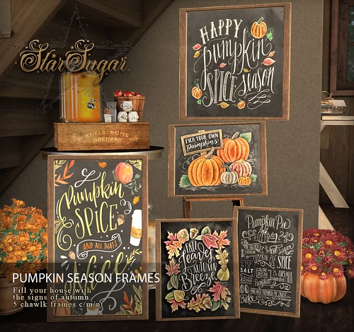 Pumpkin Season Frames